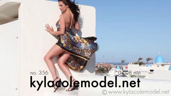 Kyla Cole - Gallery Cover no. 356
