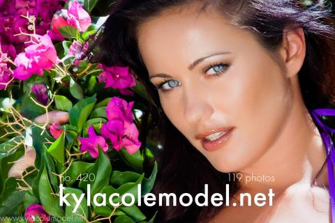 Kyla Cole - Gallery Cover no. 420