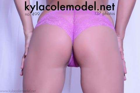 Kyla Cole - Gallery Cover no. 499