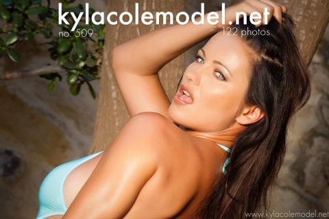 Kyla Cole - Gallery Cover no. 509