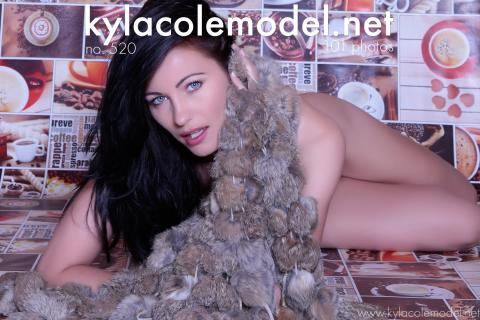Kyla Cole - Gallery Cover no. 520
