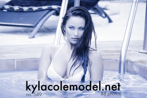 Kyla Cole - Gallery Cover no. 549