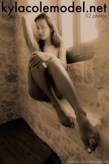 Kyla Cole - Gallery Cover no. 663