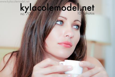 Kyla Cole - Gallery Cover no. 700